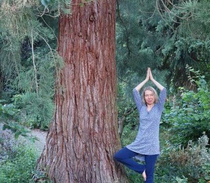 "Yoga <span class=""amp"">&</span> English – naturverbunden"